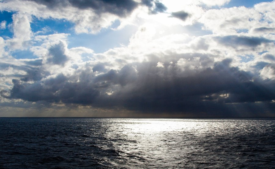 At Sea 2010 Caribbean Westerdam 019